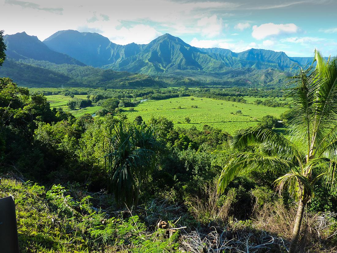Kaua ʻi